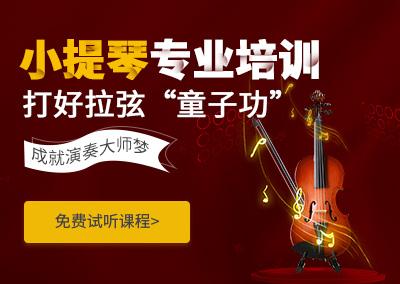 广州天河哪有专业培训小提琴的机构