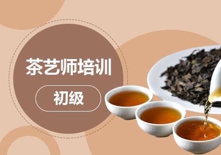 南京茶藝師資格考試輔導班