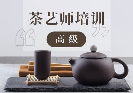 厦门一对一茶艺师入门培训班