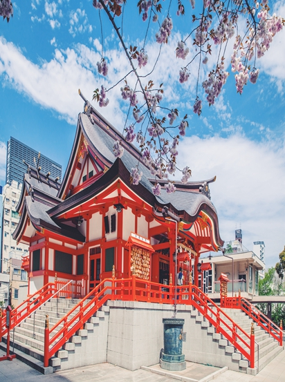 天津日本留学在线咨询