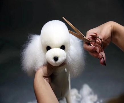 长沙宠物美容师培训价格