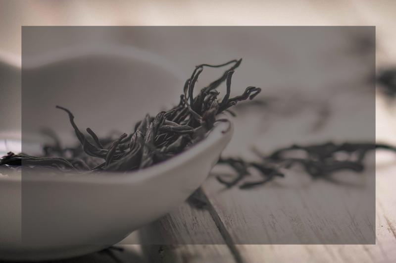 贵阳茶艺师教育培训
