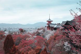 西安日语培训有哪些