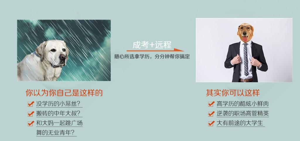 镇江成人高考本科培训班