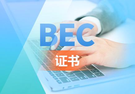 bec在线培训班