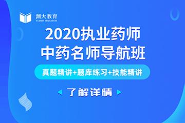 北京执业药师中药名师导航班