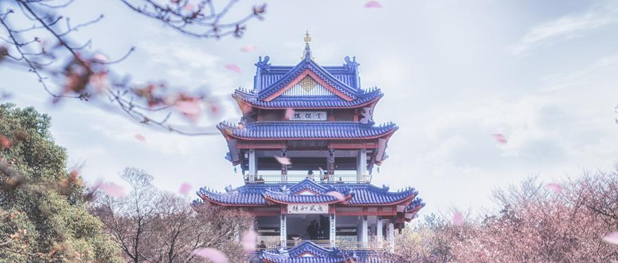 绵阳涪城区十大日语培训机构