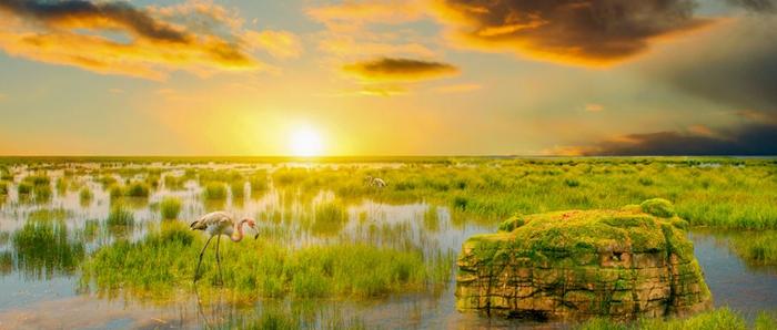 郑州景观设计专业课程费用