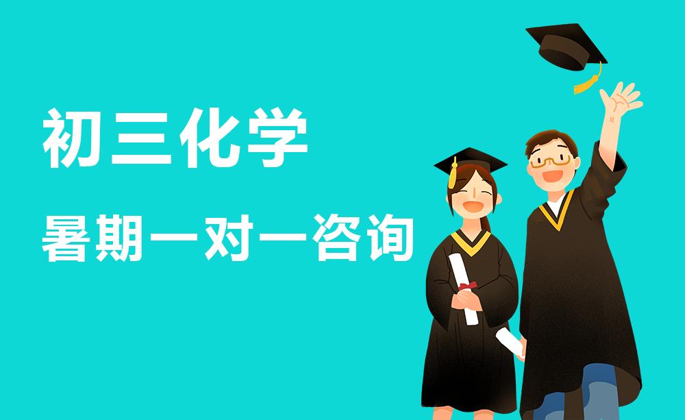 郑州初三化学暑期辅导班