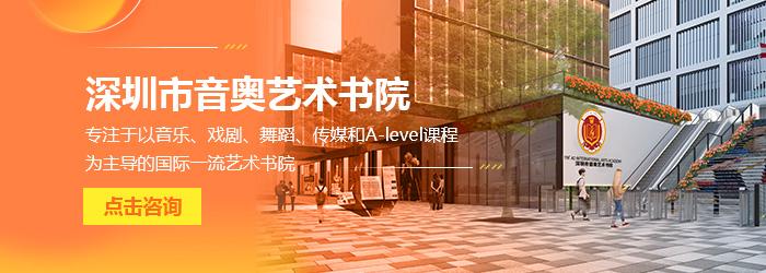 深圳市音奥艺术书院